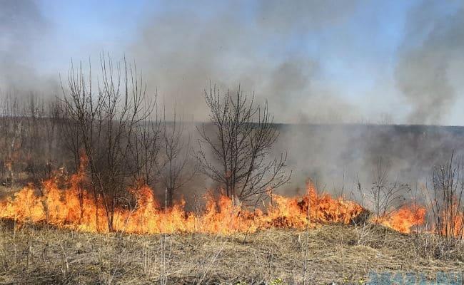 Противопожарный режим в Моздокском районе
