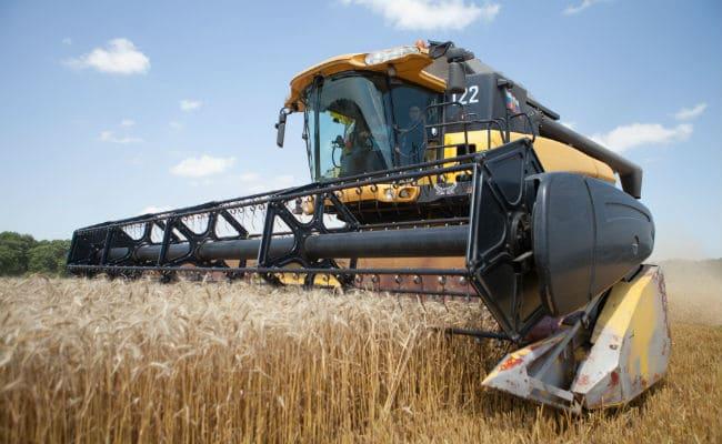 В республике увеличилось производство сельхозпродукции